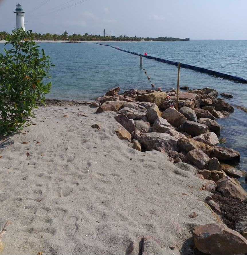 beach_boom5_1.jpg